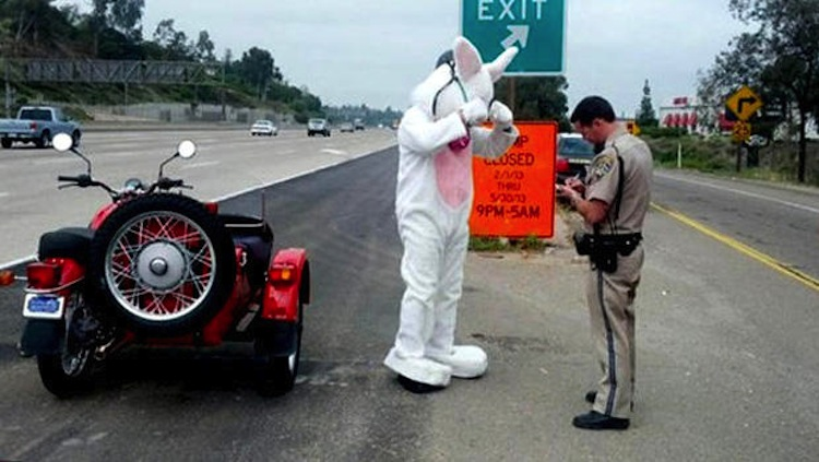 Easter bunny ticket, ticket on a motorcycle, bunny on motorcycle ticket
